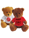 ALS T-Shirt Wearing Teddy Bear